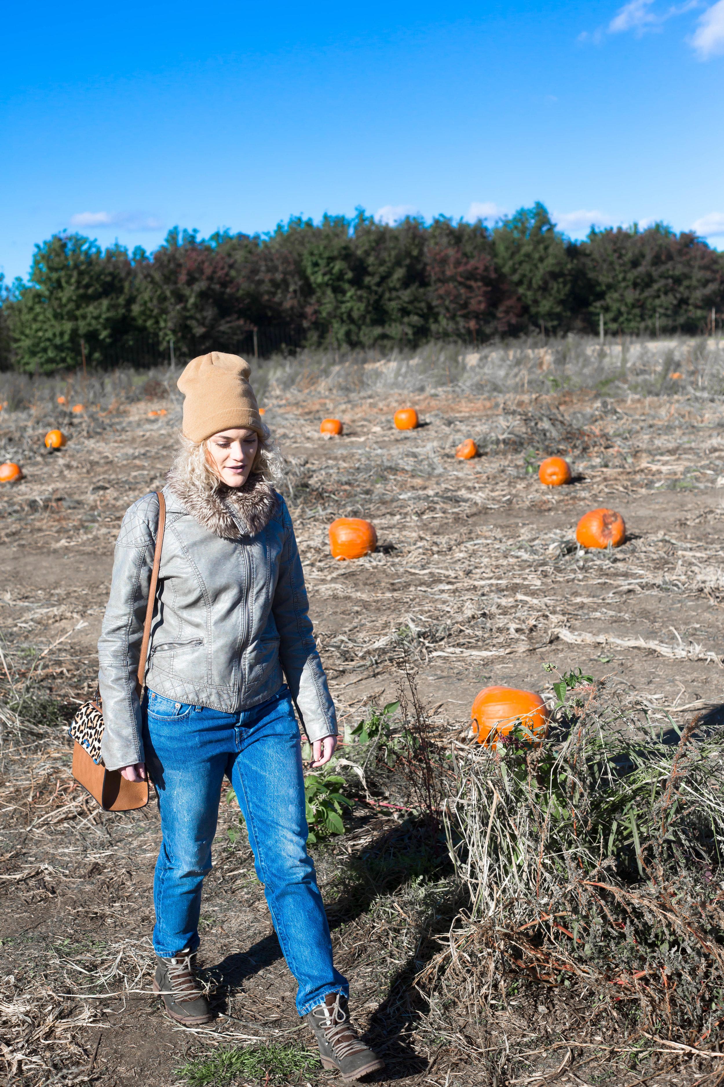 Pumpkin Patch (5 of 26).jpg