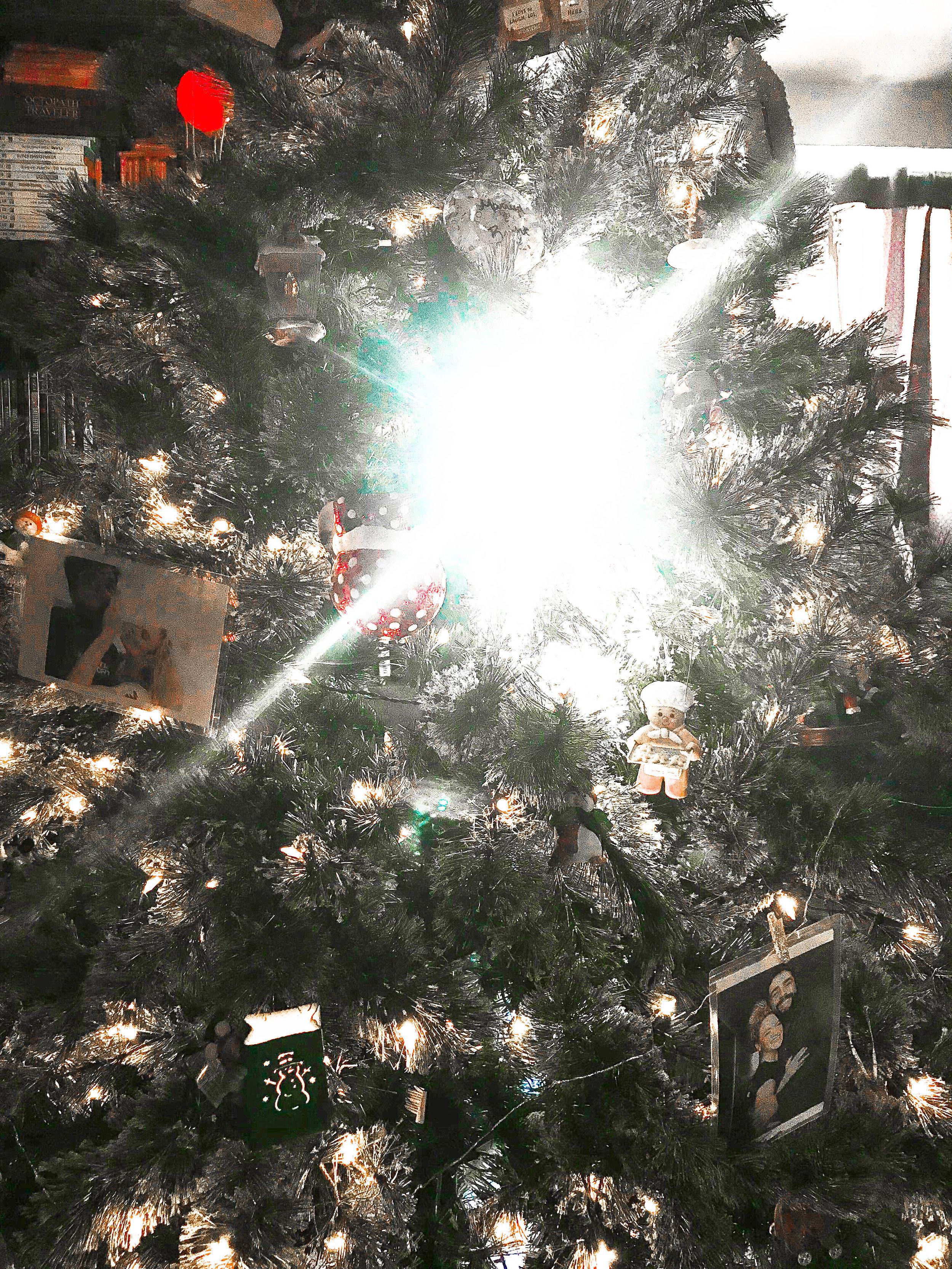 Christmas (2 of 13).jpg