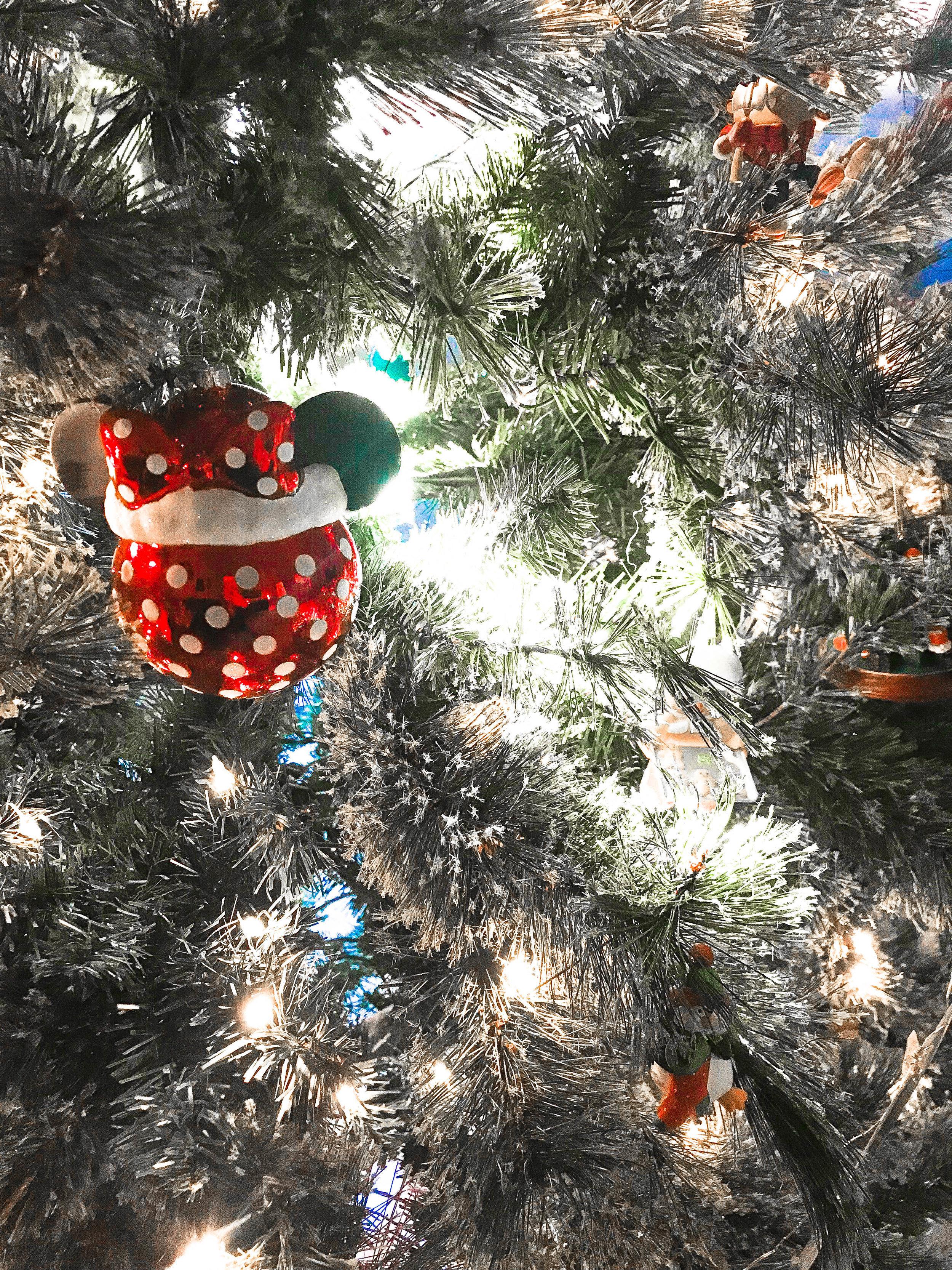Christmas (5 of 13).jpg