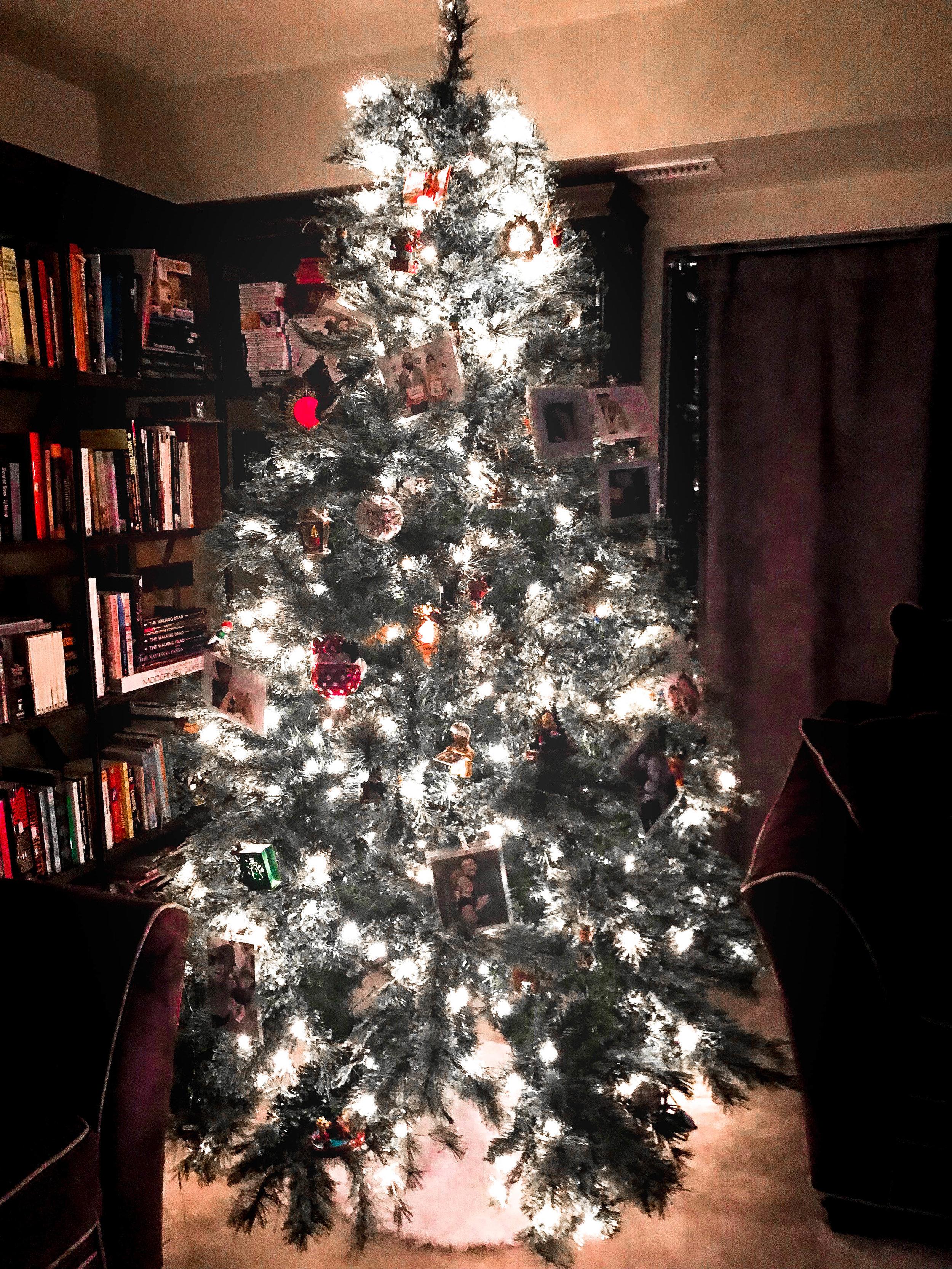 Christmas (10 of 13).jpg