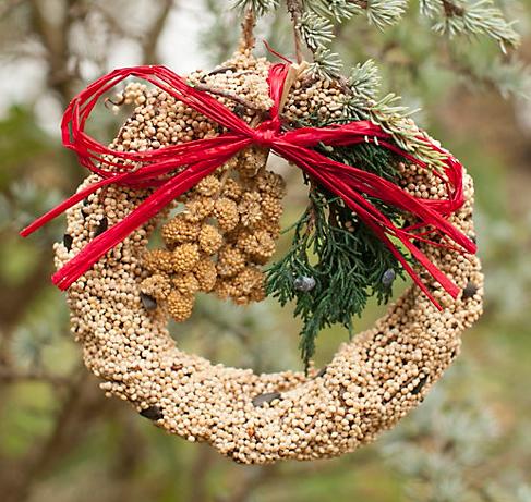 Terrain  Edible Seed Wreath, Large  $14