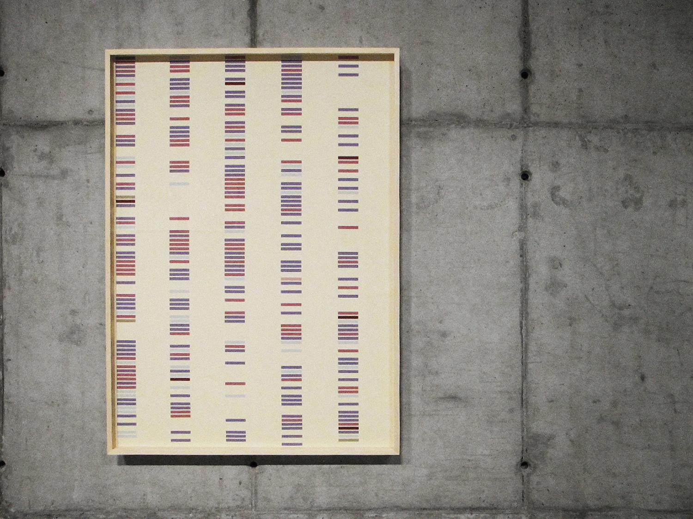 Coincidências  (  série Autorretratos Estatísticos) •2012 • Jato de tinta sobre papel de algodão + livro de artista •1,15 x 0,82 m