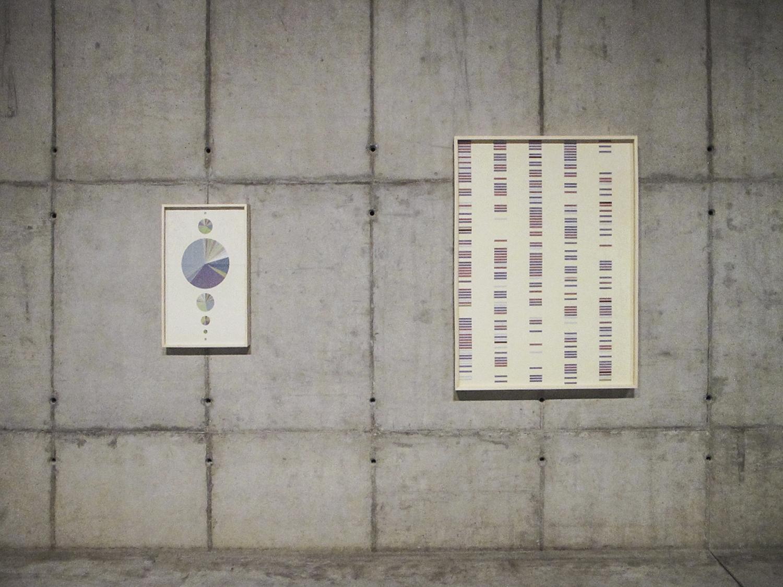 Provenances and Coincidencies   (  Statistical  Self-portraits series  ) • 2012
