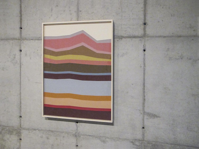 Hemograma Simples  (  série Autorretratos Estatísticos) •2012 • Jato de tinta sobre papel de algodão + livro de artista •1,15 x 0,86 m
