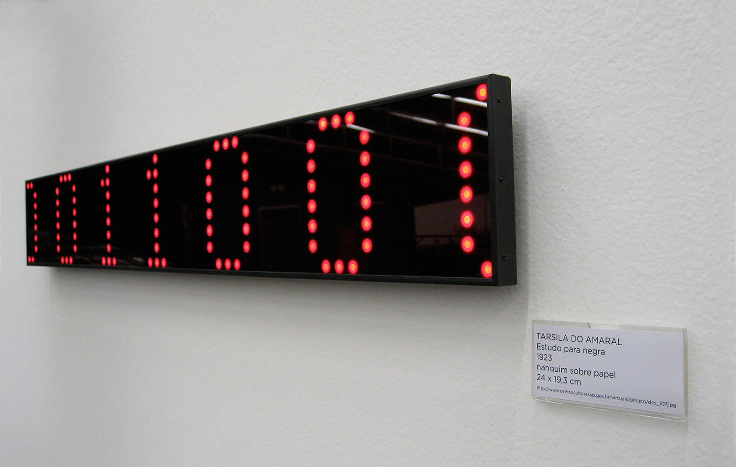 Collection (detail) •2007 •  Seven decoded digital images on LED displays, seven identification tags •  5.1 x 35.4 in (each display), 1.9 x 3.9 in (each tag)  •  Art Collection of the City of São Paulo