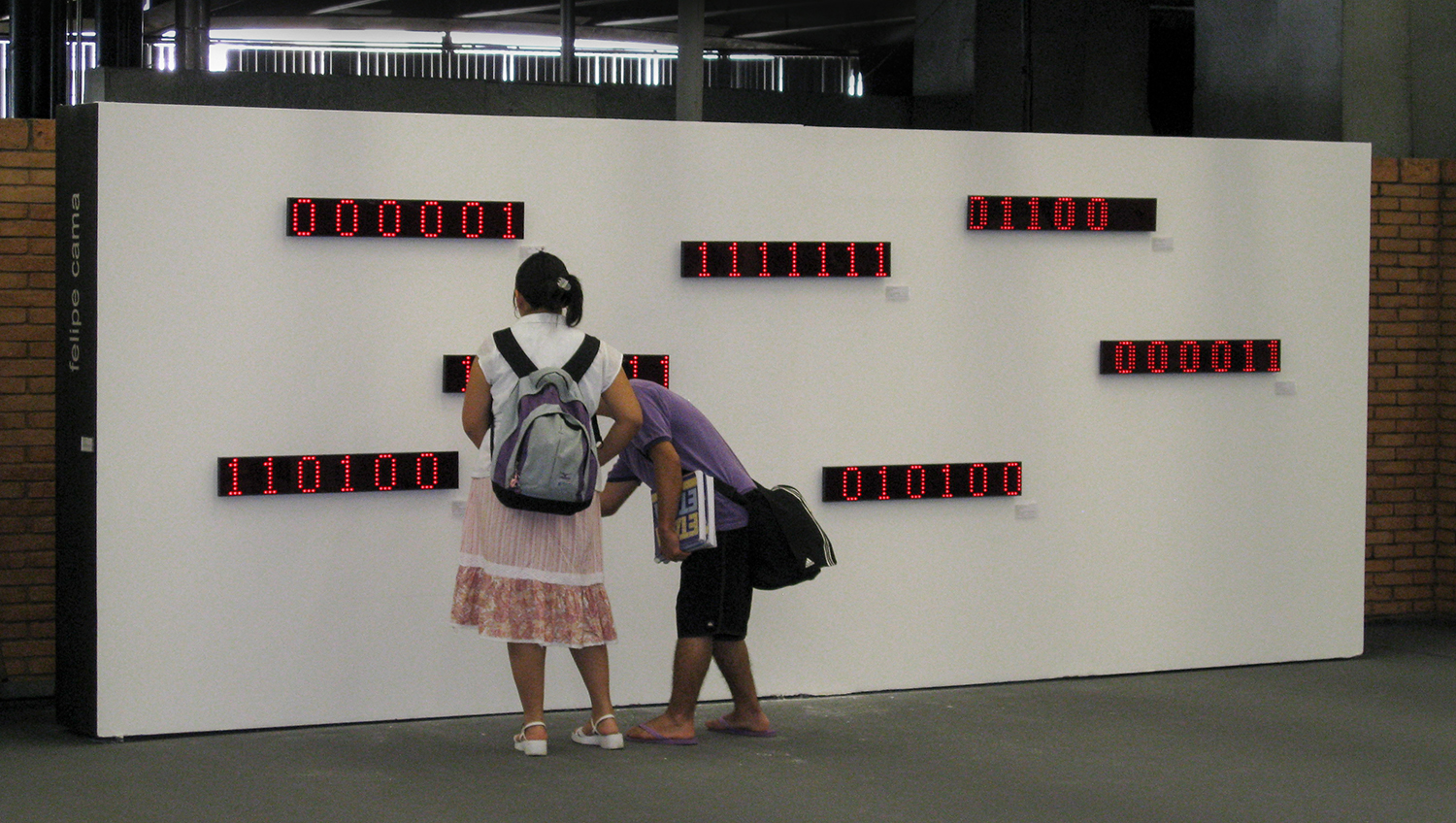 Collection •2007 •  Seven decoded digital images on LED displays, seven identification tags •  5.1 x 35.4 in (each display), 1.9 x 3.9 in (each tag)  •  Art Collection of the City of São Paulo