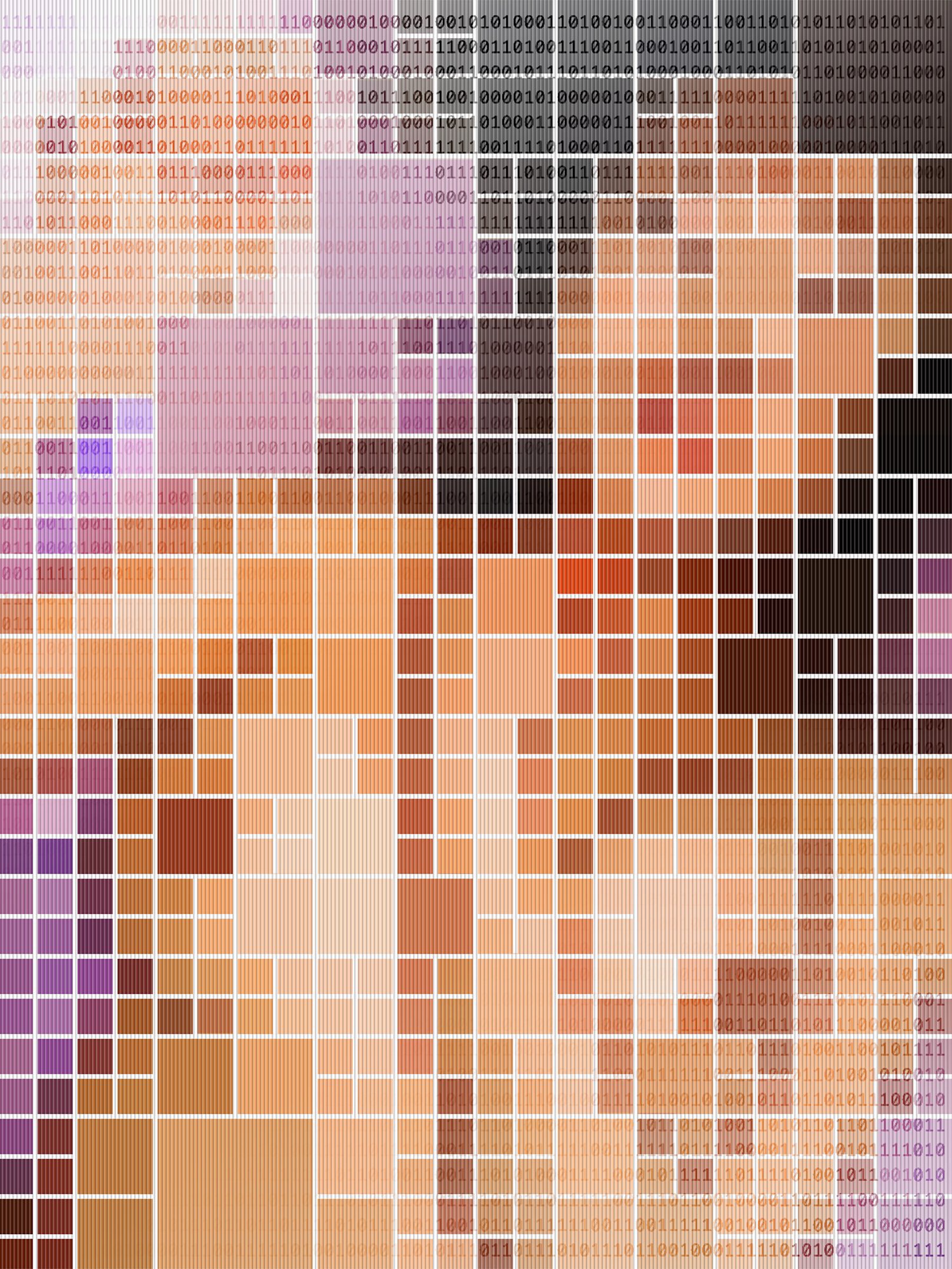 Binary Nudes (2005/2008)