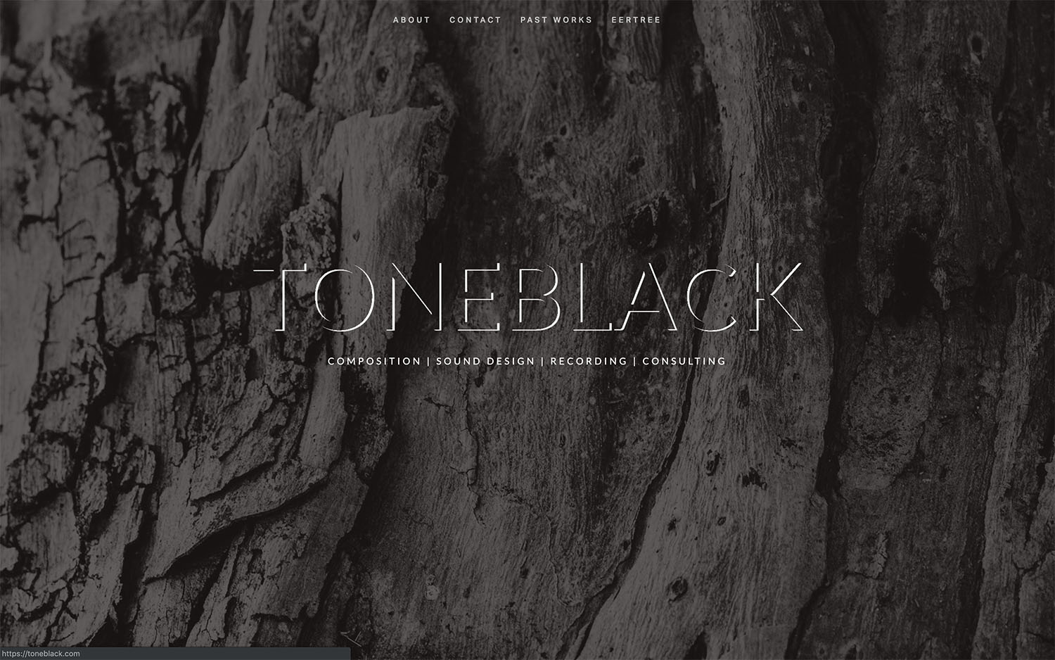 Tone Black Productions - Independent audio production company.Site designed & launched January 2018.