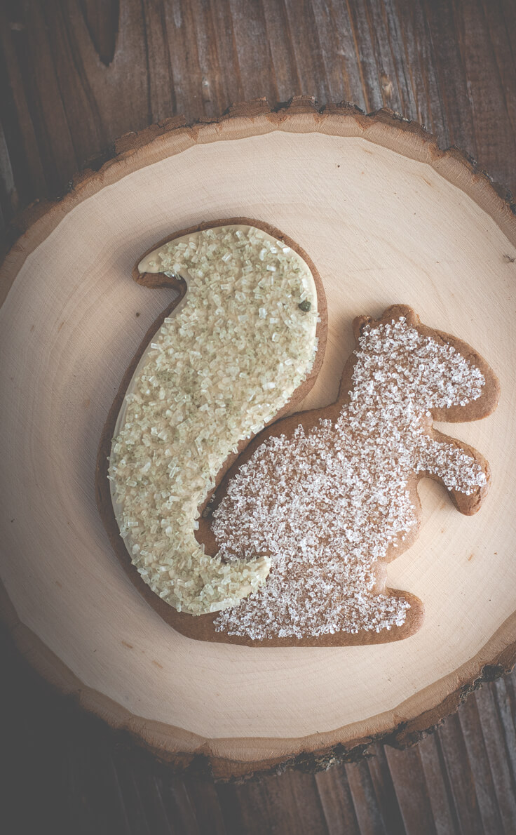- Sugar Squirrel & Mighty Acorn Molasses Cookies