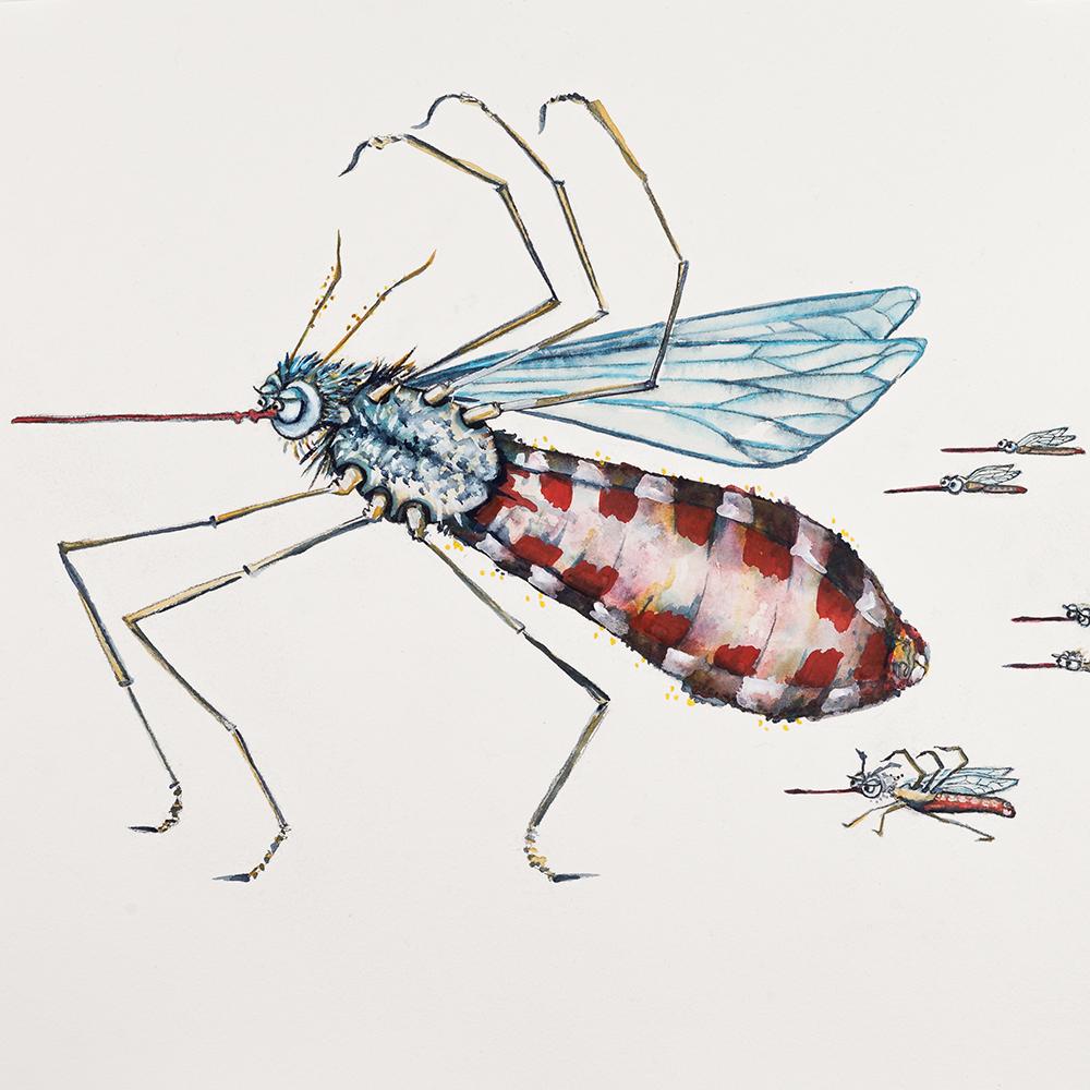 'Squadron of Mosquitos' (2015) Helen Kocis Edwards