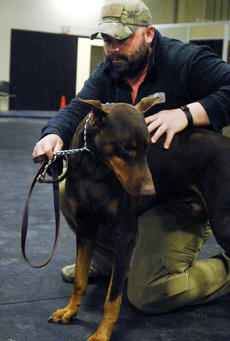 By Jill Pickett, The News-Enterprise  Sean O'Shea, a medically retired Army veteran, works on the behavior, stand, with therapy dog Keegan, during a canine assisted therapy session Thursday on Fort Knox. The program is a joint effort by Ireland Army Community Hospital and the Fort Knox office of the American Red Cross. The program serves active duty military and retirees working through Post Traumatic Stress Disorder or a traumatic brain injury.