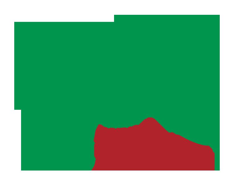 APA2017.png