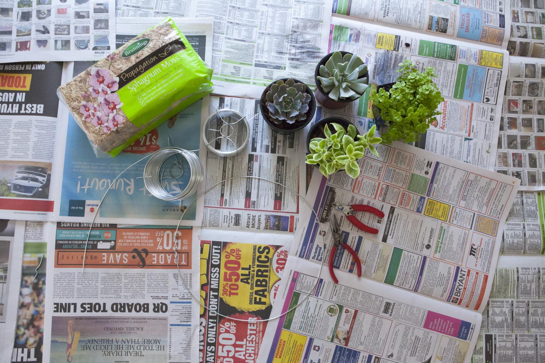 succulent-wreath-diy-1