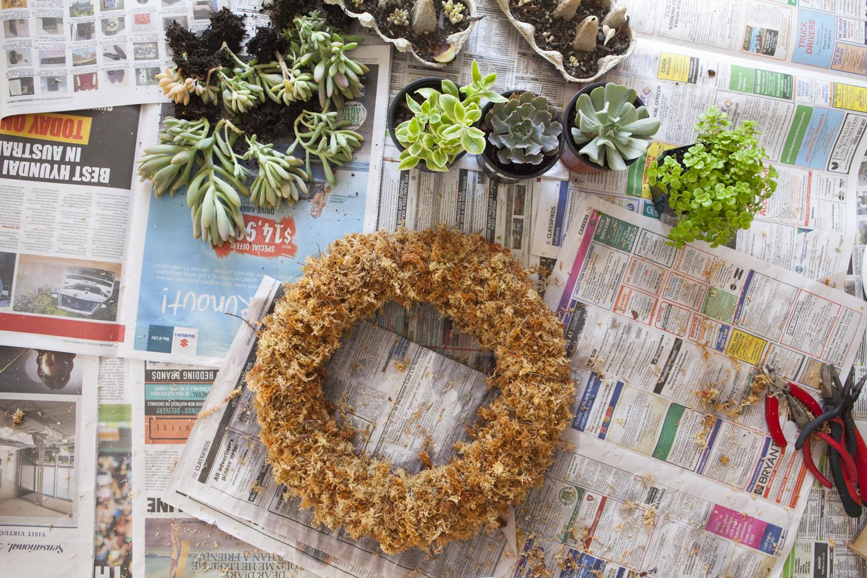 succulent-wreath-diy-7