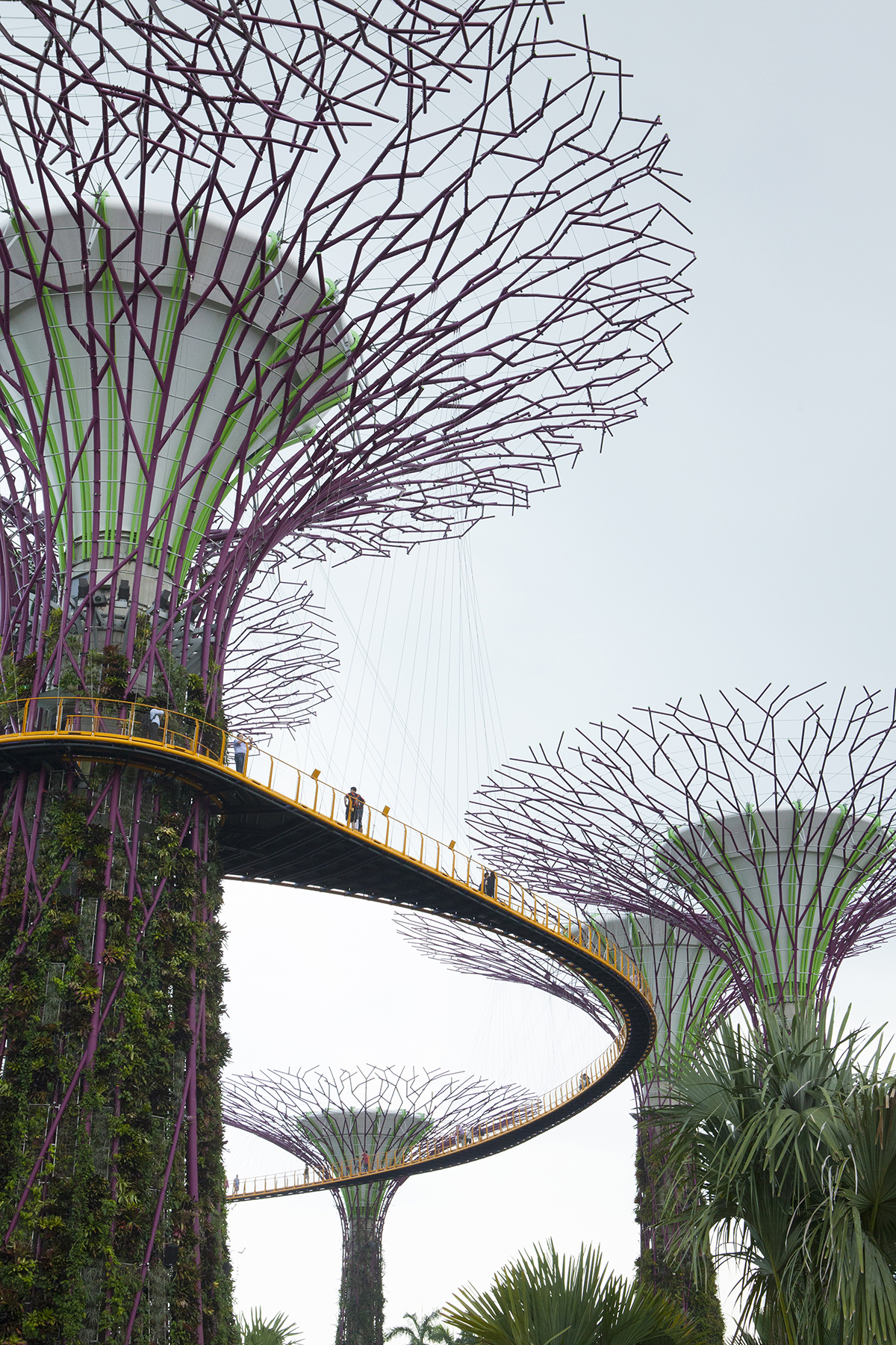 jessica-currier-photography-singapore-supertree-grove