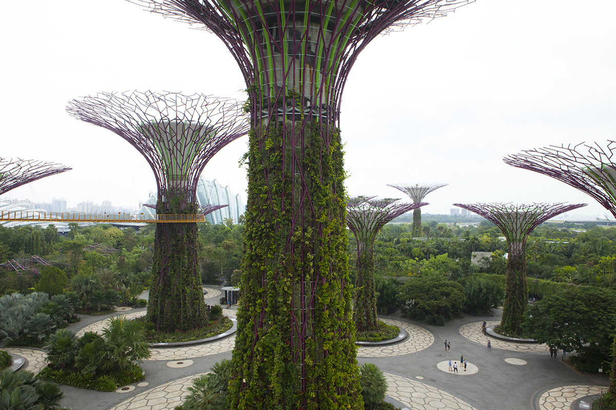 jessica-currier-photography-singapore-supertree-grove3