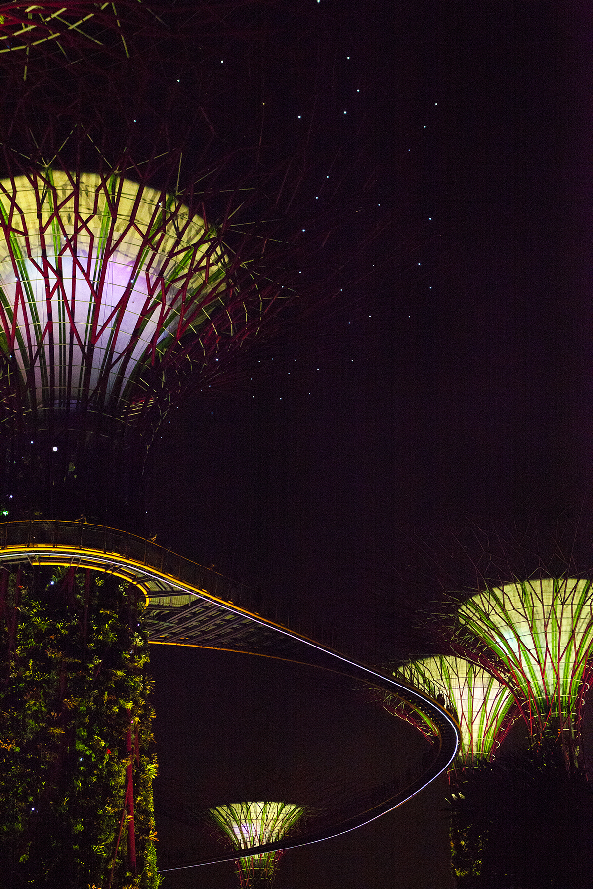 jessica-currier-photography-singapore-supertree-grove-4