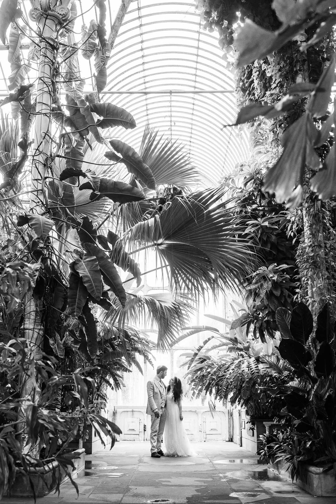 Kew Gardens Wedding, Palm House, Alexandria Hall Photography (52 of 81).jpg