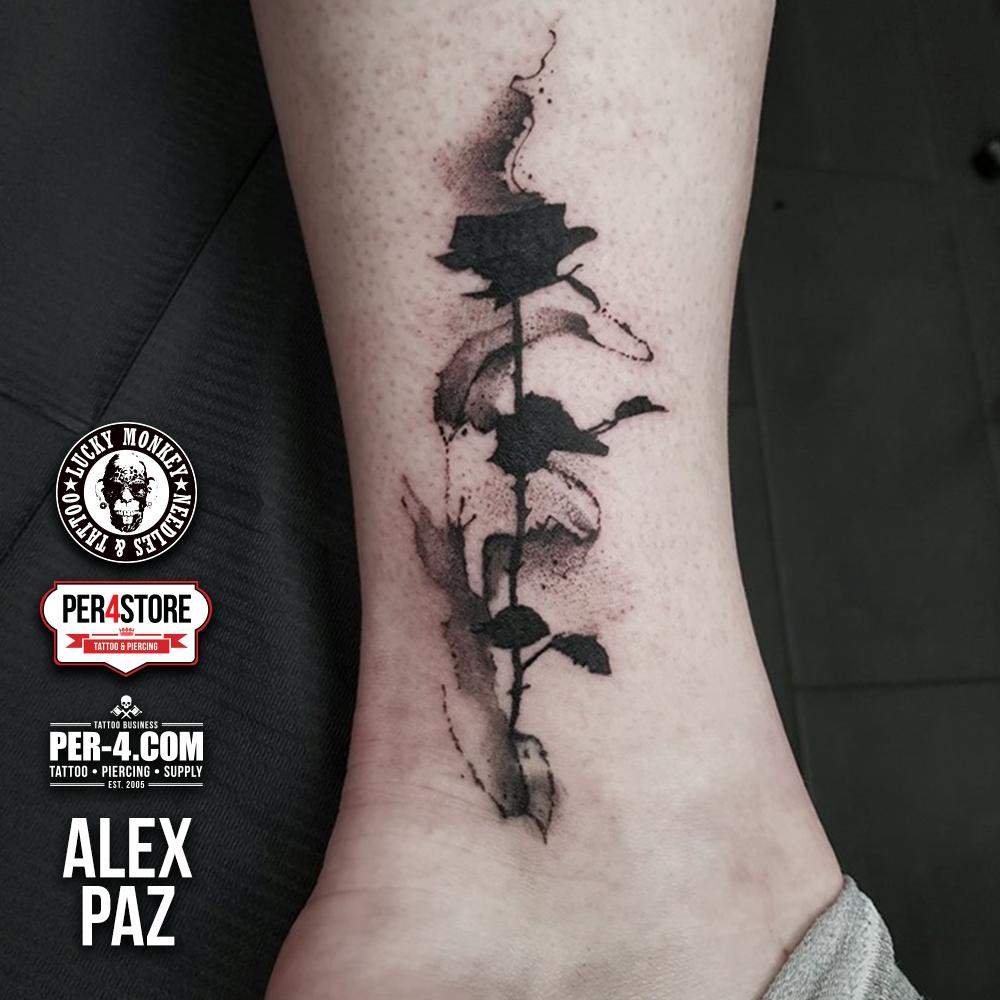 Alex-Paz-02.png