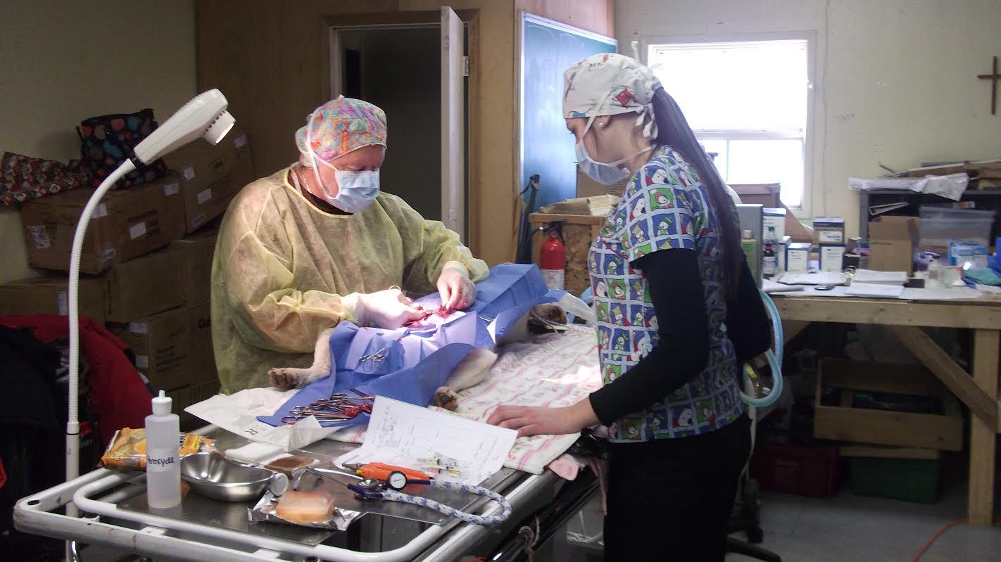 Dr. Jouppi operating.jpg