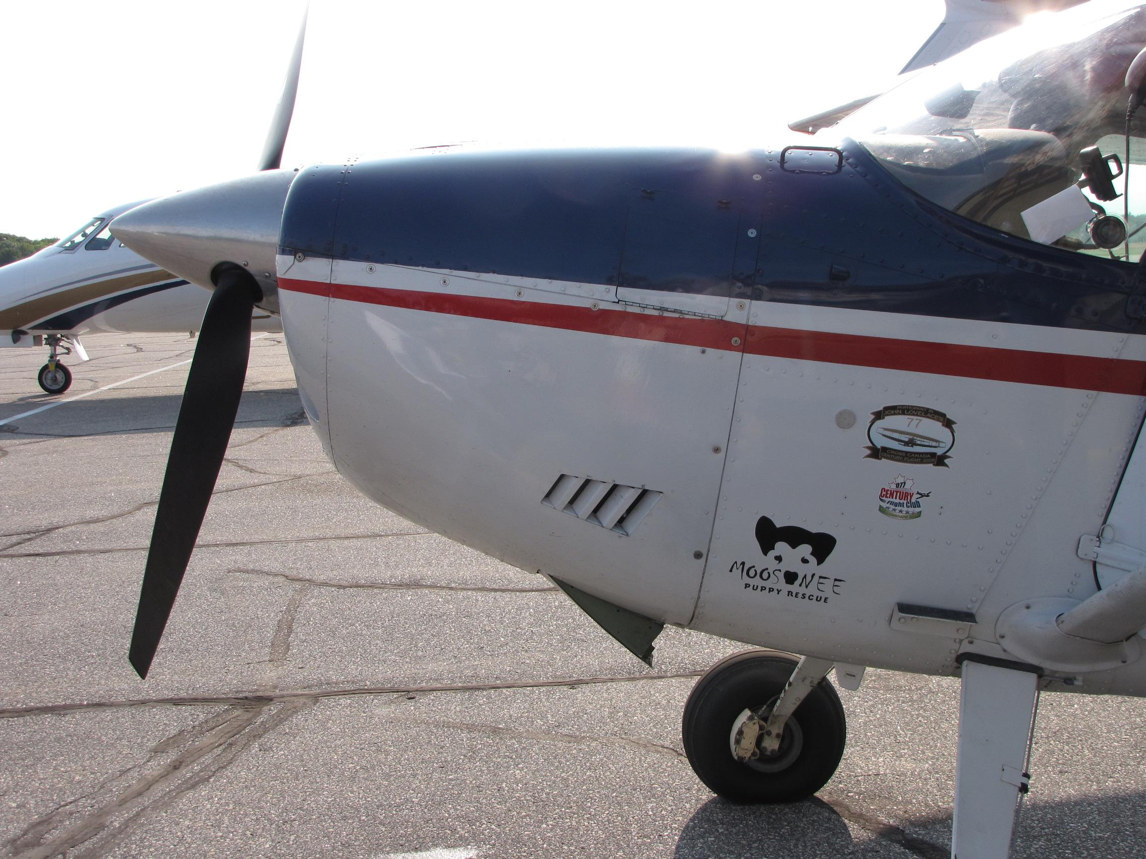Logo on plane.JPG