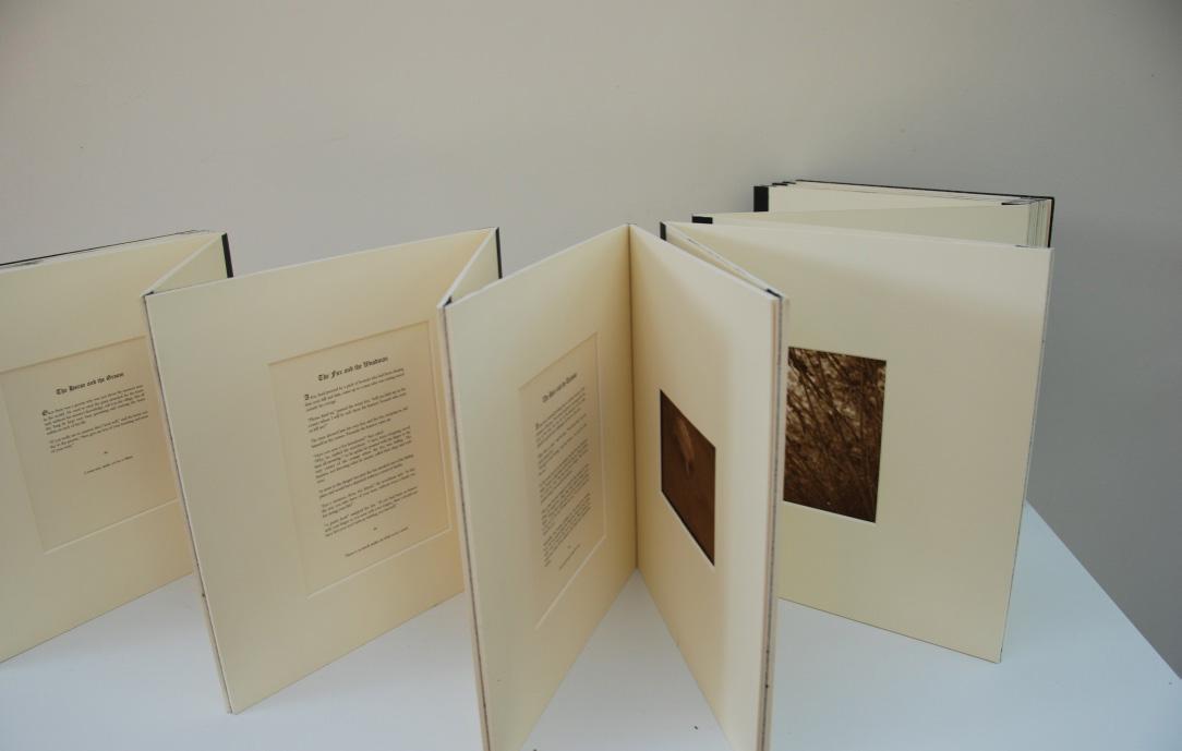Fable Book 2 Crop.jpg