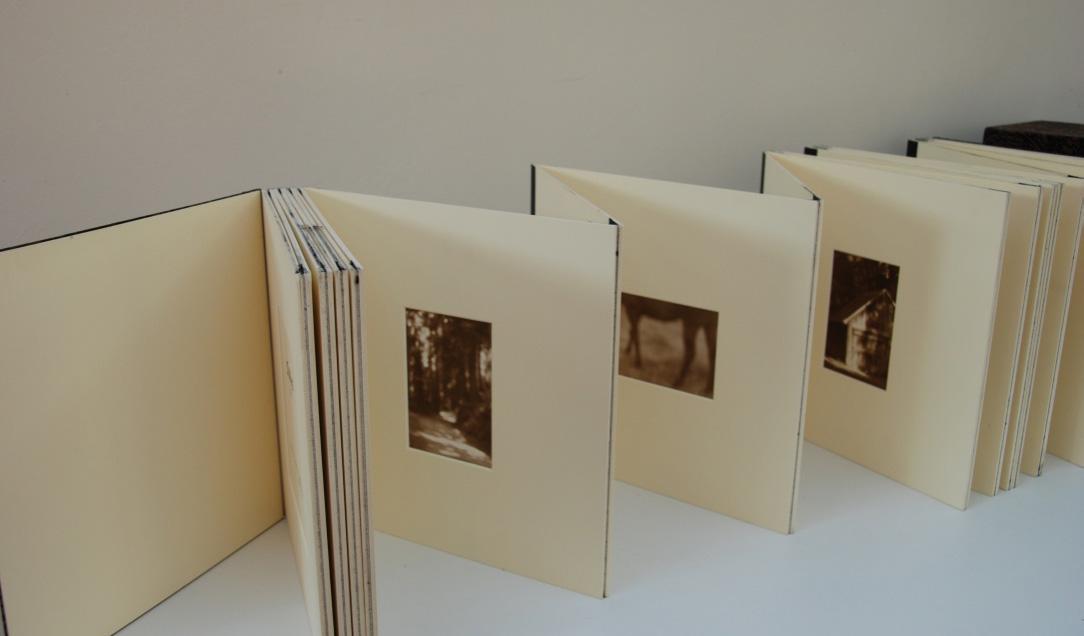 Fable Book 1 Crop .jpg