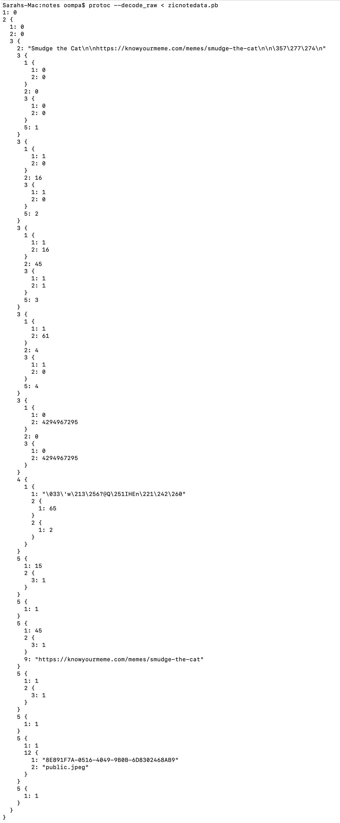 notes_pb_protoc.jpg