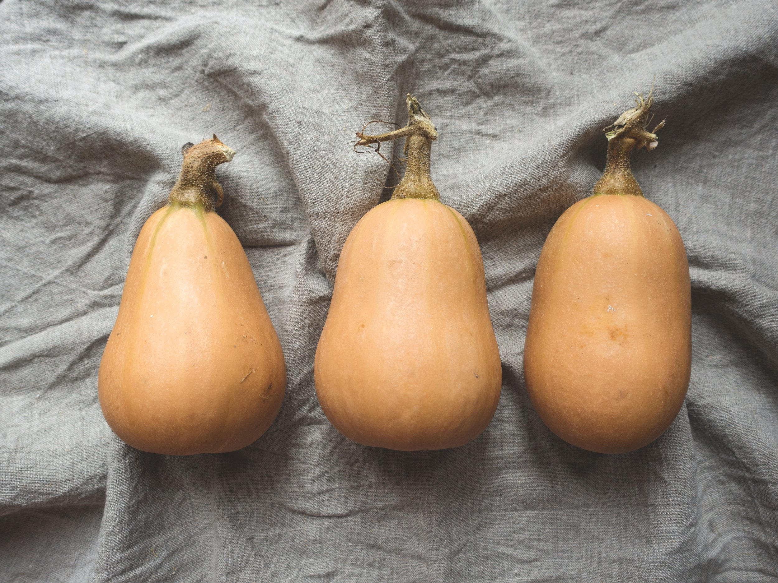 winter squash ready for roasting
