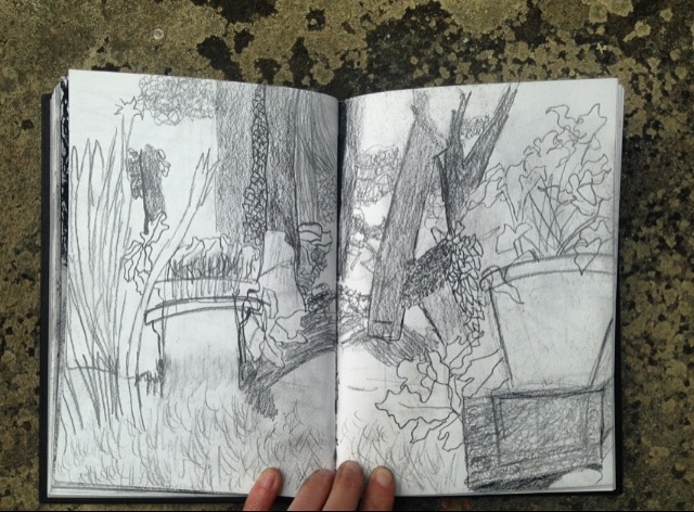 Vineyard drawings by Michelle Stein