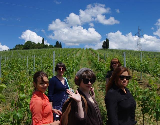 Springtime vineyard walks  (photo credit: Amelie Blanchard)