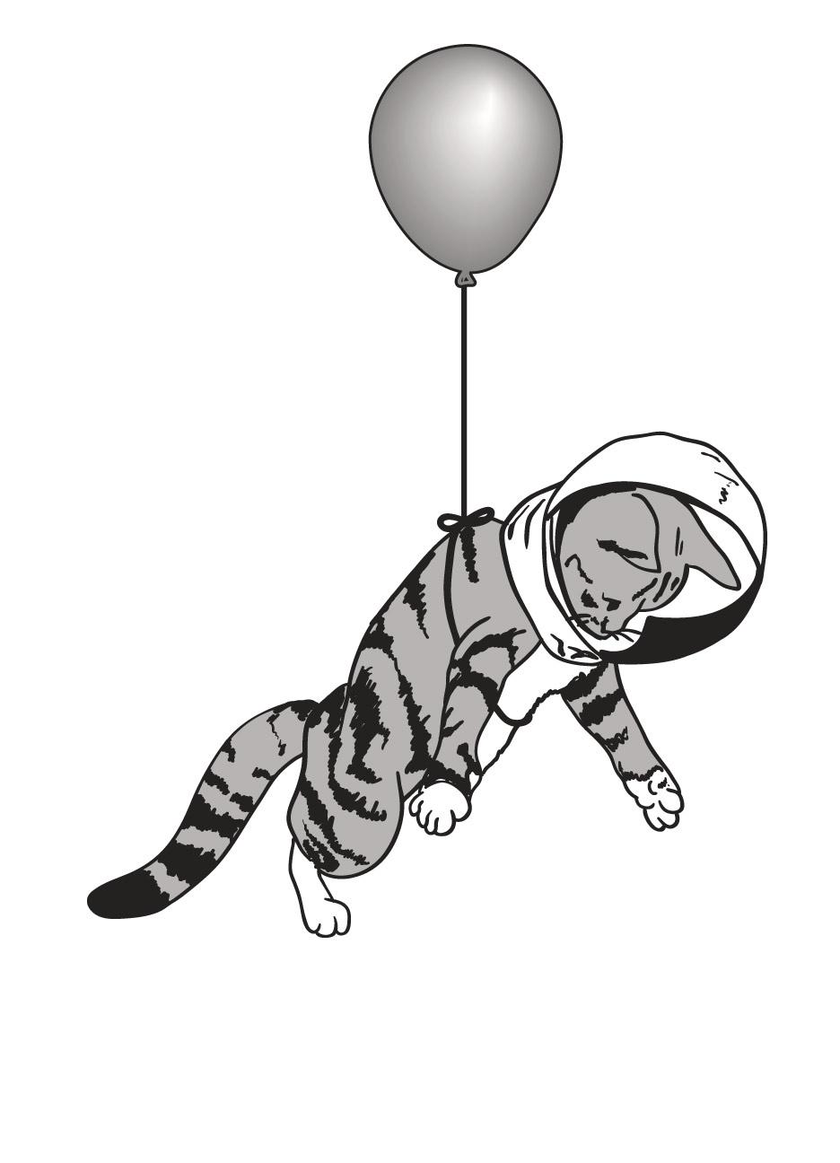 Space-Kitty-Proof.jpg