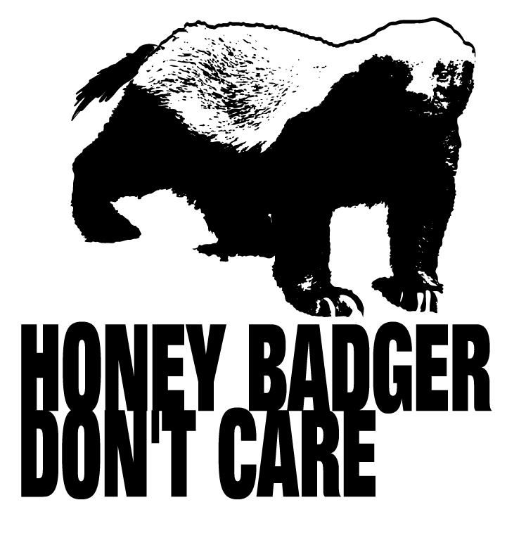 Honey-Badger-don't-care-Proof-3.jpg