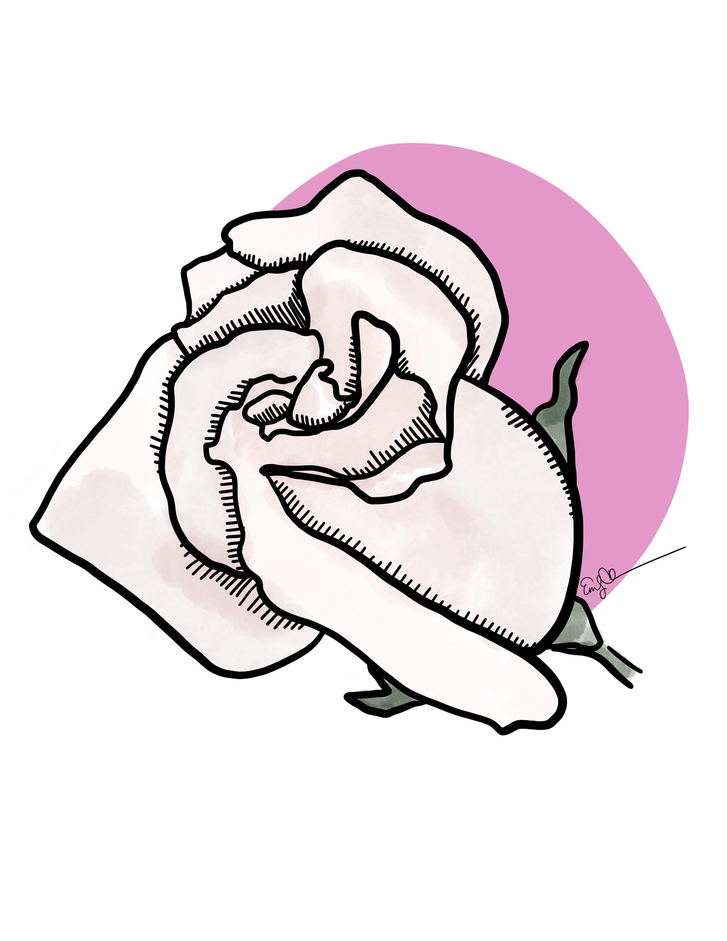 Rose (Pale Pink).jpg