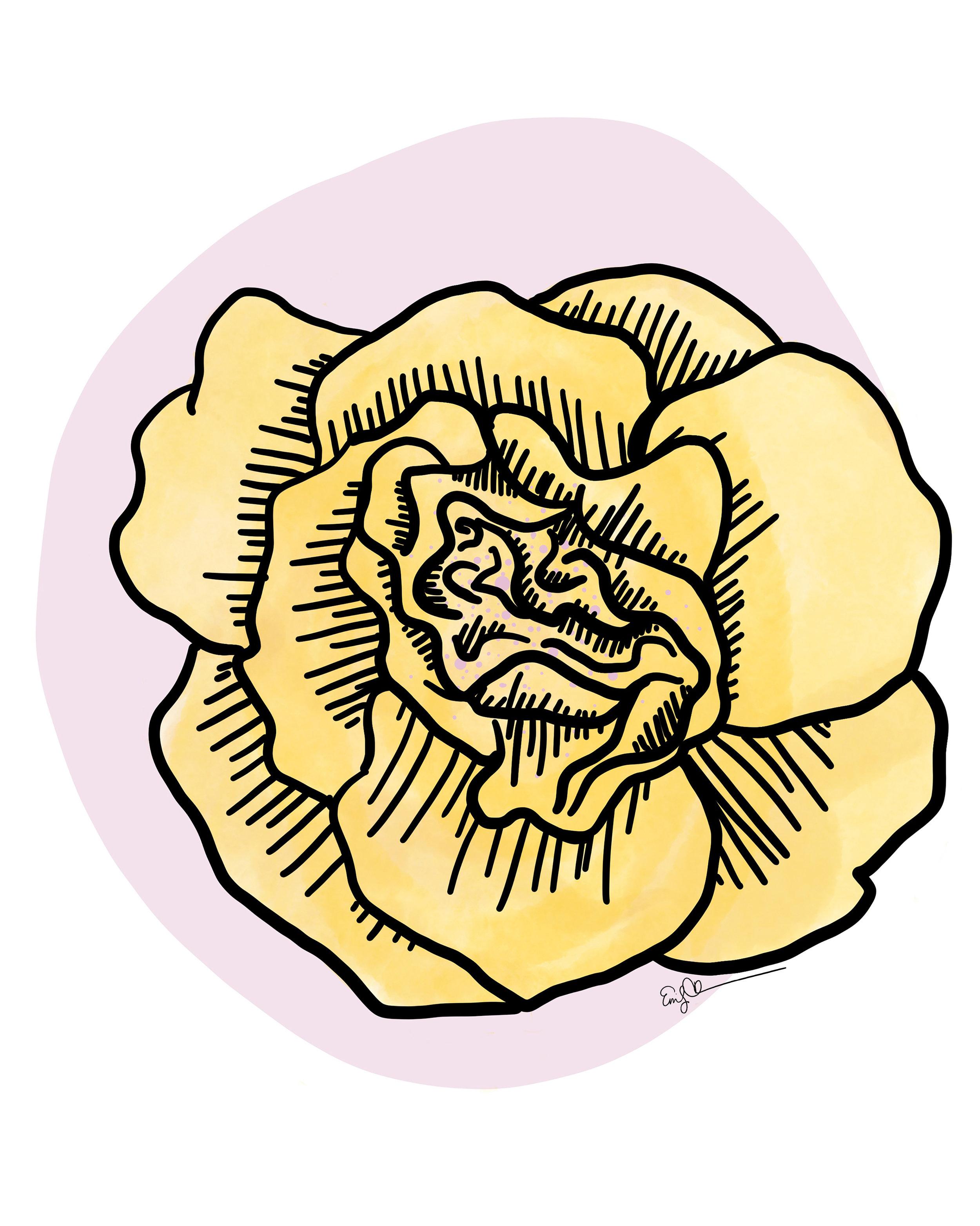 Yellow Begonia.JPG