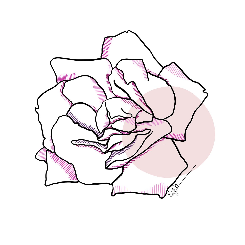Rose (Pink).jpg