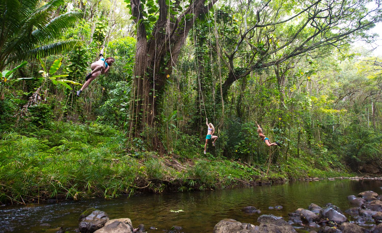Kauai005.jpg