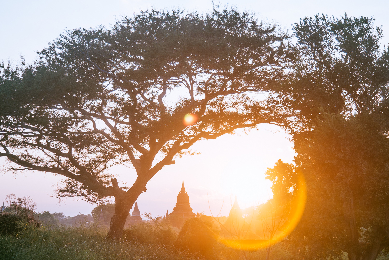 Myanmar051.jpg