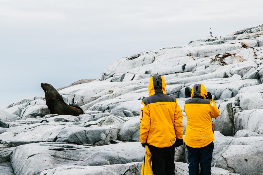 antarctica055.jpg