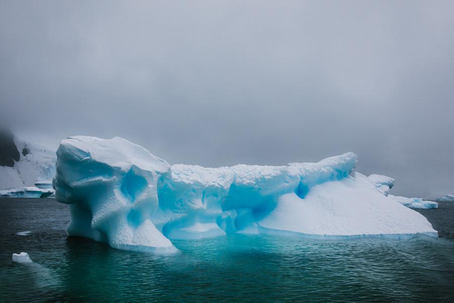 antarctica073.jpg