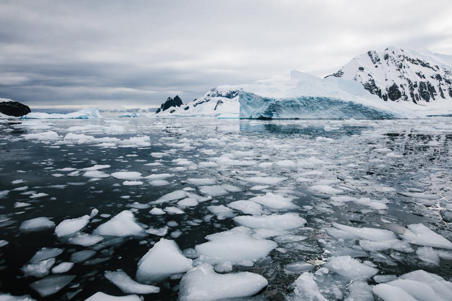 antarctica086.jpg