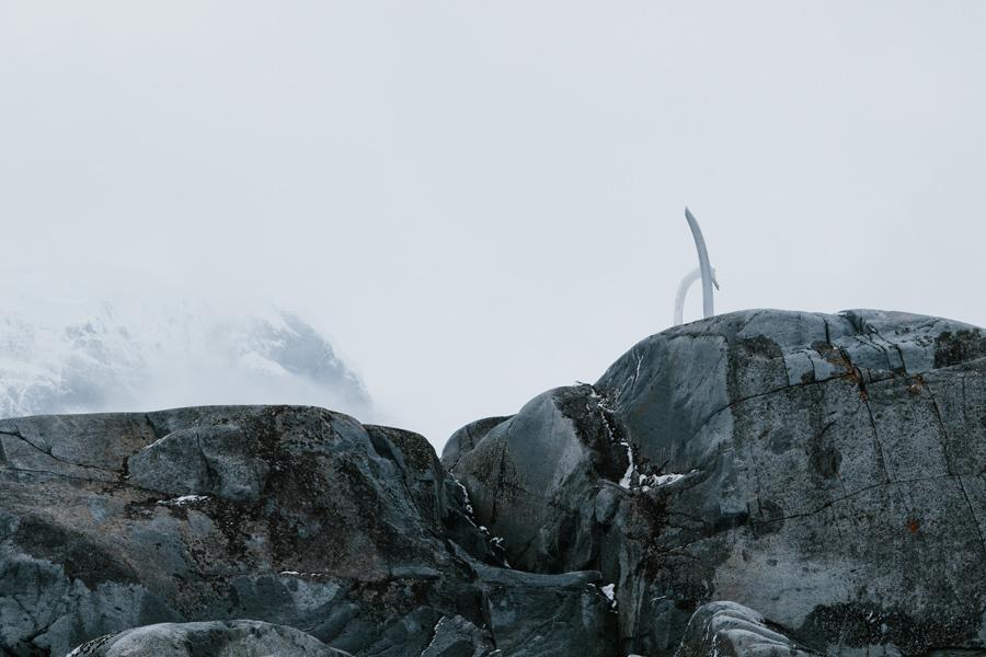 antarctica099.jpg