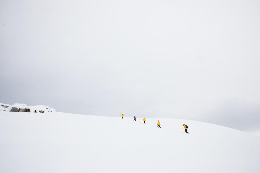 antarctica105.jpg