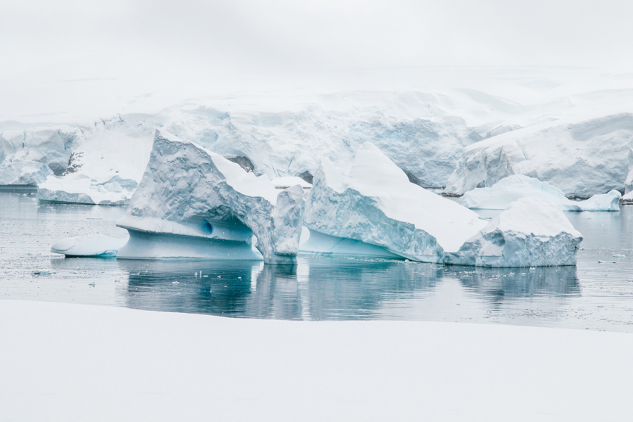 antarctica108.jpg