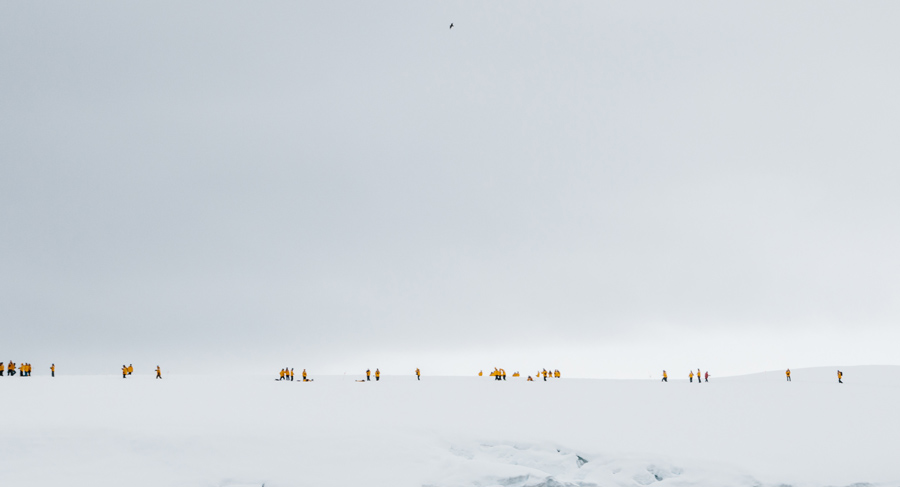 antarctica116.jpg