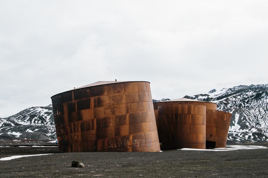antarctica138.jpg