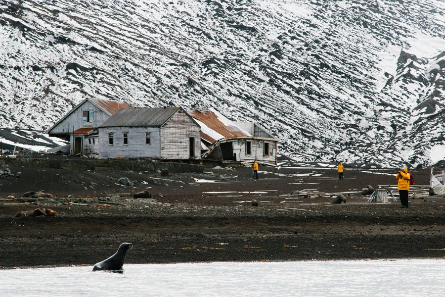 antarctica137.jpg