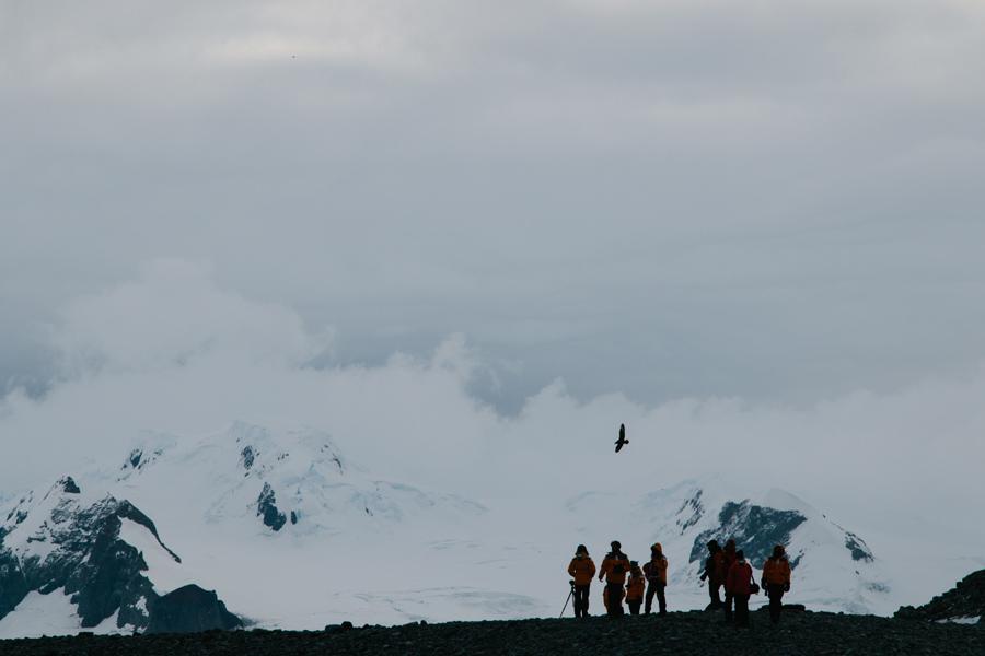 antarctica157.jpg