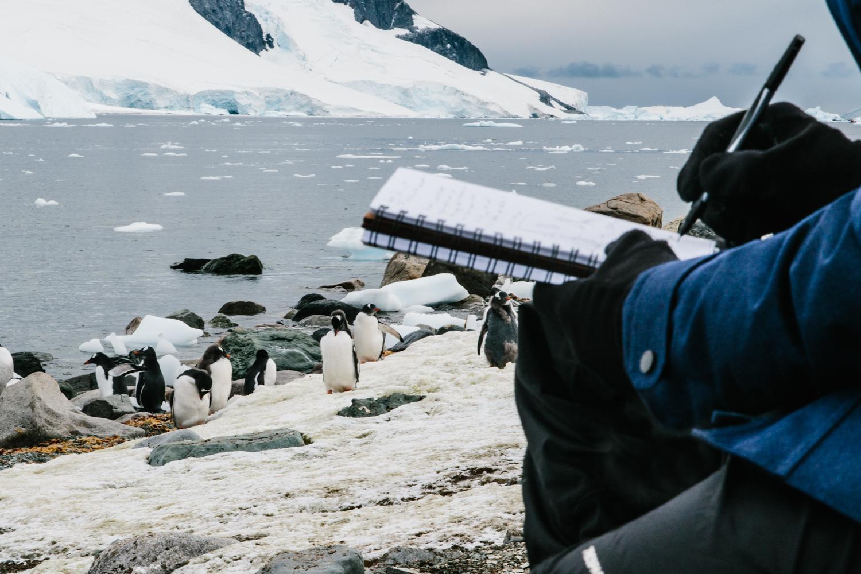 Antarctica-119.jpg