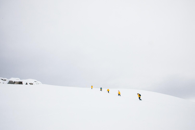 Antarctica-141.jpg